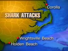 Third 'Biting' Incident Reported Along N.C. Coast