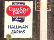 Earlier this year, the owners of Hallman Farms built chicken houses on their land. One neighbor says the smell is too much to bear.(WRAL-TV5 News)