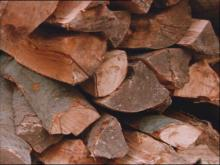 Firewood is seen as a cheaper alternative to heating oil.(WRAL-TV5 News)