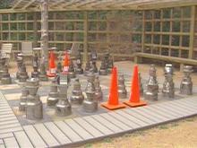 Chess Pieces Returned to Botanical Gardens