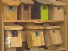 Warren County Farmer Displays Knack For Building Birdhouses