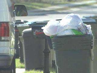 Raleigh Trash Bin