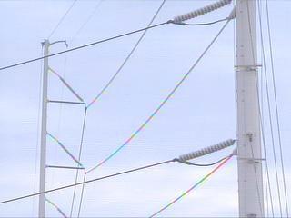 Progress Energy Power Lines