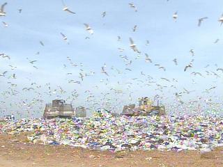 Wake Landfill