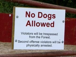 Schenck Forest - No Dogs Allowed