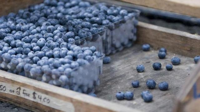 Blueberries from Lyon Farms.