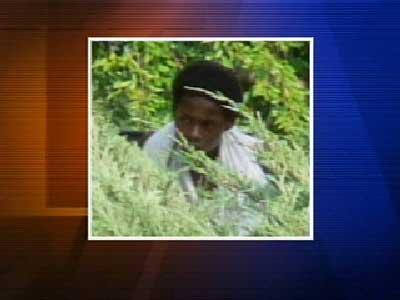 Person Wanted For Questioned -- Pullen Park