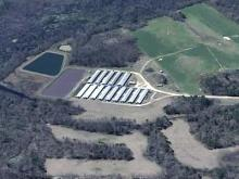 Debate Continues over Hog Farming's Impact on N.C. Rivers