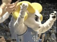 UNC Student Mascot Dies After Being Hit by SUV