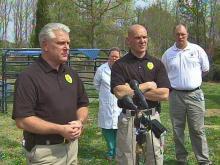 WEB ONLY: Authorities Discuss Neglected Sheep