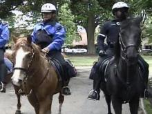Raleigh Says Police Horses Need a New 'Station'