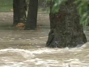 Parts of Fuquay-Varina flooded Sunday after the much-needed rain.