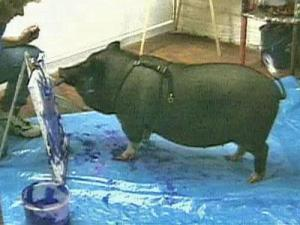 Smithfield, a pot-bellied pig who can paint, is also battling cancer.