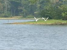 Questions Surround Creedmoor's Lake Dredging Project