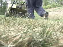 Drought Takes Toll on 'Green Industry'
