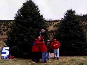 A North Carolina Fraser fir was chosen as the official Christmas tree for the White House in 2007.