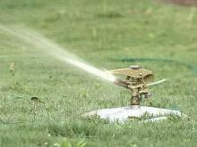 Durham could cut down on lawn watering