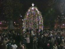 Governor, First Lady light Christmas tree