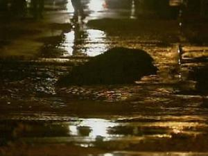 Water covers MLK Boulevard in Chapel Hill Friday morning after a water main break.