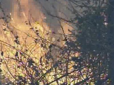 Brush fires were reported Sunday, Feb. 10, 2008, in Franklinton.