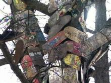 Skateboarders Take on City Over Self-Made Shrine