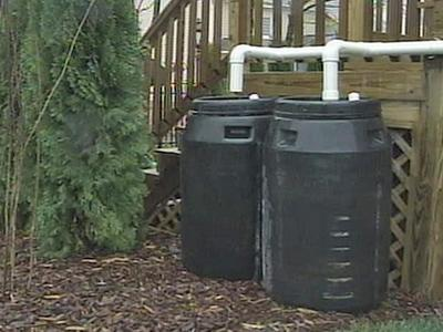A rain barrel collects and stores rainwater from rooftops.