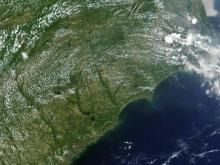 Wildfire burns in eastern N.C.
