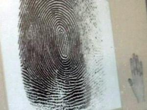 Wake County deputies scan fingerprints when they book a person for a crime.