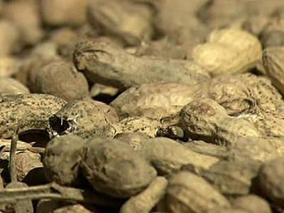 Peanut farmers seeing effects of salmonella scare
