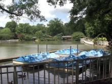 Pullen Park paddleboats on lake