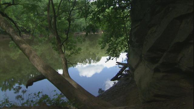 A trail at Raven Rock State Park ends with a glimpse of the Cape Fear River.