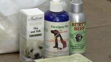 Getting rid of fleas without chemicals?