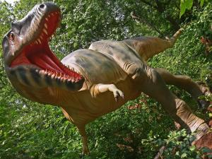 This large carnivore was a relative of the Tyrannosaurus Rex, and one of the largest carnivores in North America.