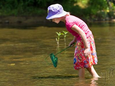 The 30th Annual Festival for the Eno River was held July 3, 4 and 5. (Photo courtesy of James Hill)