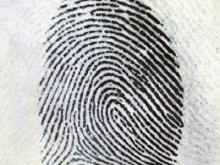 The Rapid Fingerprint Identification device is being used in City/County Bureau of Identification in Wake and Durham.