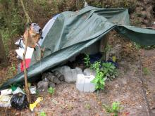 A primitive campsite supported the growers of 2,400 marijuana plants, worth about $6 million, in a wooded area near the Black River, found by aerial surveillance on Thursday, Sept. 4, 2009. (Photo courtesy of the Sampson County Sheriff's Office)