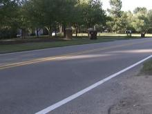 Authorities seek leads in Halloween hit-and-run