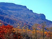 Fall color has crept its way down Grandfather Mountain.  Heres the profile as seen from Foscoe. (Photo by Catherine Morton/Grandfather Mountain)