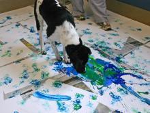 Dog painting_01