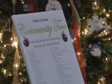 'Community Tree' sparks holiday debate in Cary