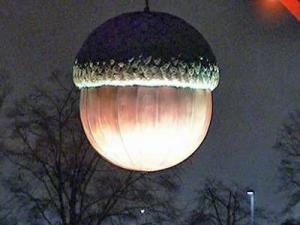 Acorn drops to signal 2010