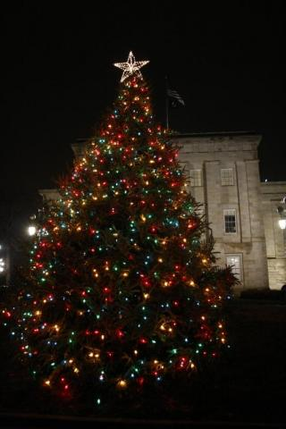 The Christmas Tree lit up on the lawn of the State Capitol during the First Night Raleigh 2010 celebration.