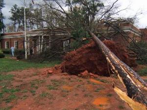WJZY General Manager Shawn Harris said violent storms blew trees down and caused damage to the Charlotte television station on Sunday, March 28, 2010.