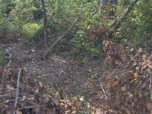 Alexander Everette crashed into brush along U.S. Highway 301 on Aug. 7, 2010.