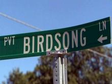 Birdsong Lane in Timberlake