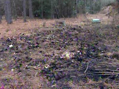 More than a dozen fires were set in a wooded area behind Douglas Byrd High and Douglas Byrd Middle schools in Fayetteville between June and December 2010.