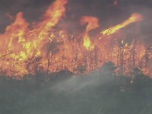 A wildfire was raging in Cumberland County near the Bladen County line Monday afternoon, burning about 600 acres of woods along Tabor Church Road, near N.C. Highway 53, authorities said.