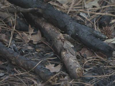 Cary police are investigating a series of suspicious fires in the Cary Parkway loop area.