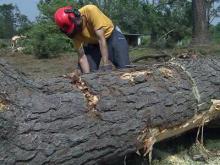Baptist Men can help tornado victims clean-up