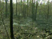 Bladen wildfire 'creeping and smoldering'